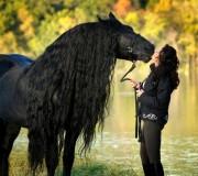 بوسه ي آتشين خوشگل تر اسب دنيا