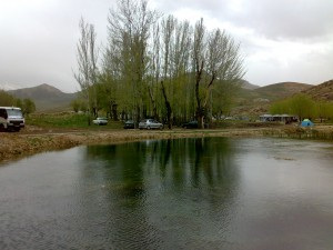 20110201909