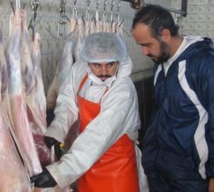 حجت السلام حسینی
