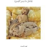 photo-راهنمای پرورش آسان سگ ۱